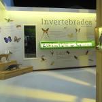 Centro de visitante Reserva Natural Linhares