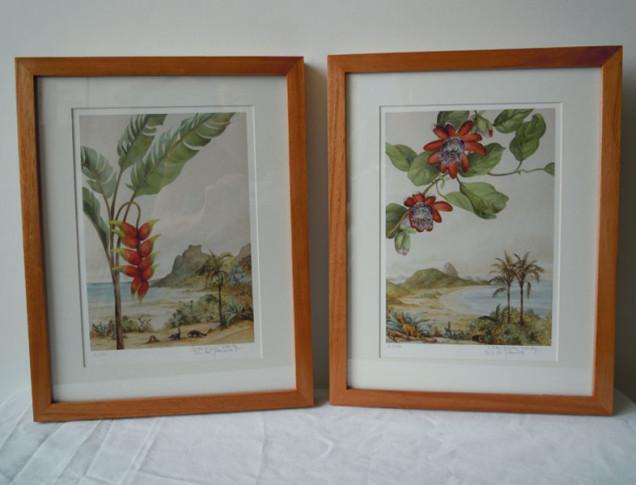 2 gravuras Rio de Janeiro com moldura